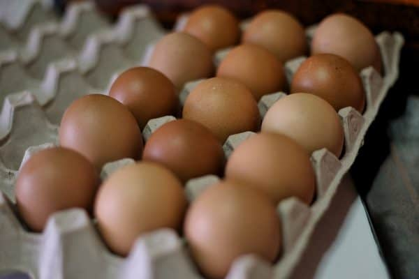 Singapore wholesalers turn to Malaysia after suspension of egg supplies from major Ukraine farms