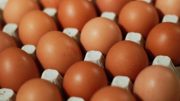 Singapore wholesalers turn to Malaysia after suspension of egg supplies from Ukraine farms